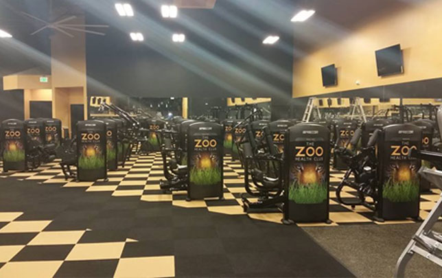 Zoo-Winter-Springs-Zumba-fitness-class-TRX-dance